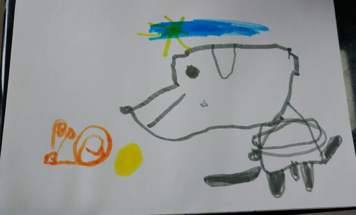 小狗与蜗牛.jpg