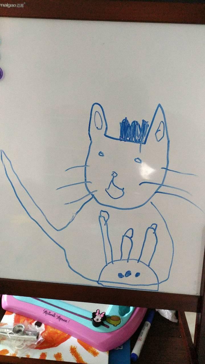 小猫过生日